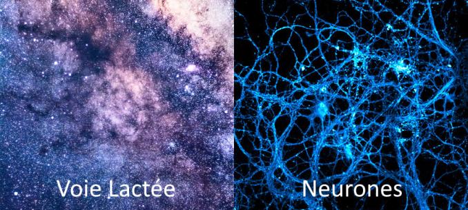 Voie Lactée-Neurones